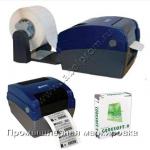 Печатающая головка BBP11-34L / BBP12-300DPI brdY951501