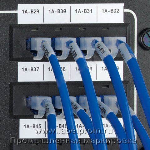 app patchpanel